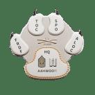 duual plate coin design
