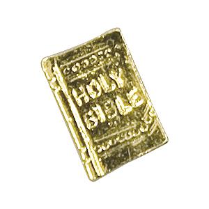 bible lapel pin