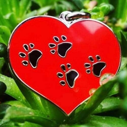 heart shaped pendant with paw prints