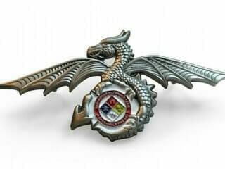 custom 3d dragon die struck lapel pin