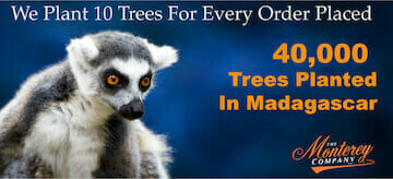 planting trees banner with a lemur