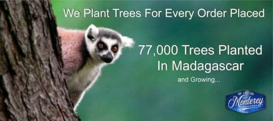 77000 trees planted by the monterey company