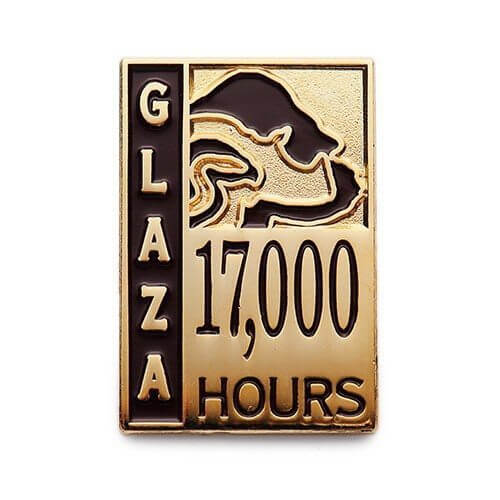 service pins for zoo 17000 hours