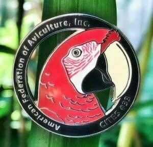 custom lapel pin - soft enamel parrot design