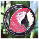 soft enamel custom pin