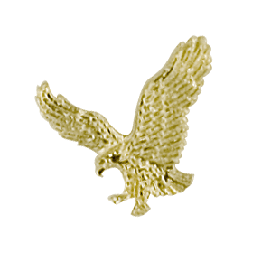 flying eagle pin