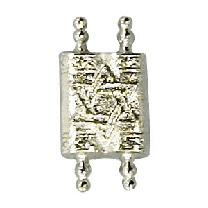Torah Lapel pin
