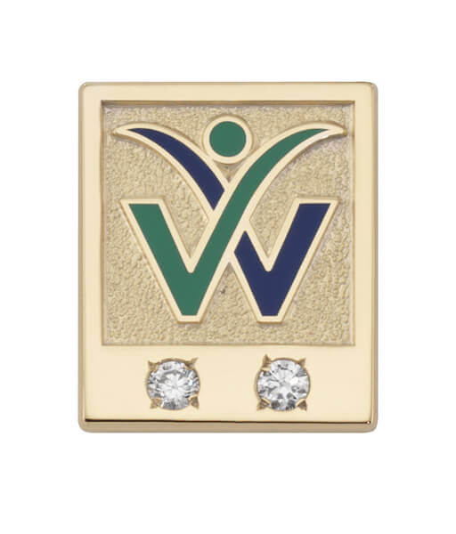 gold pin with two diamonds