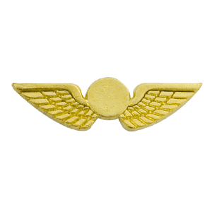 airline wing pin
